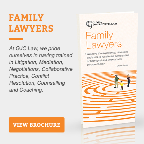 international family lawyer