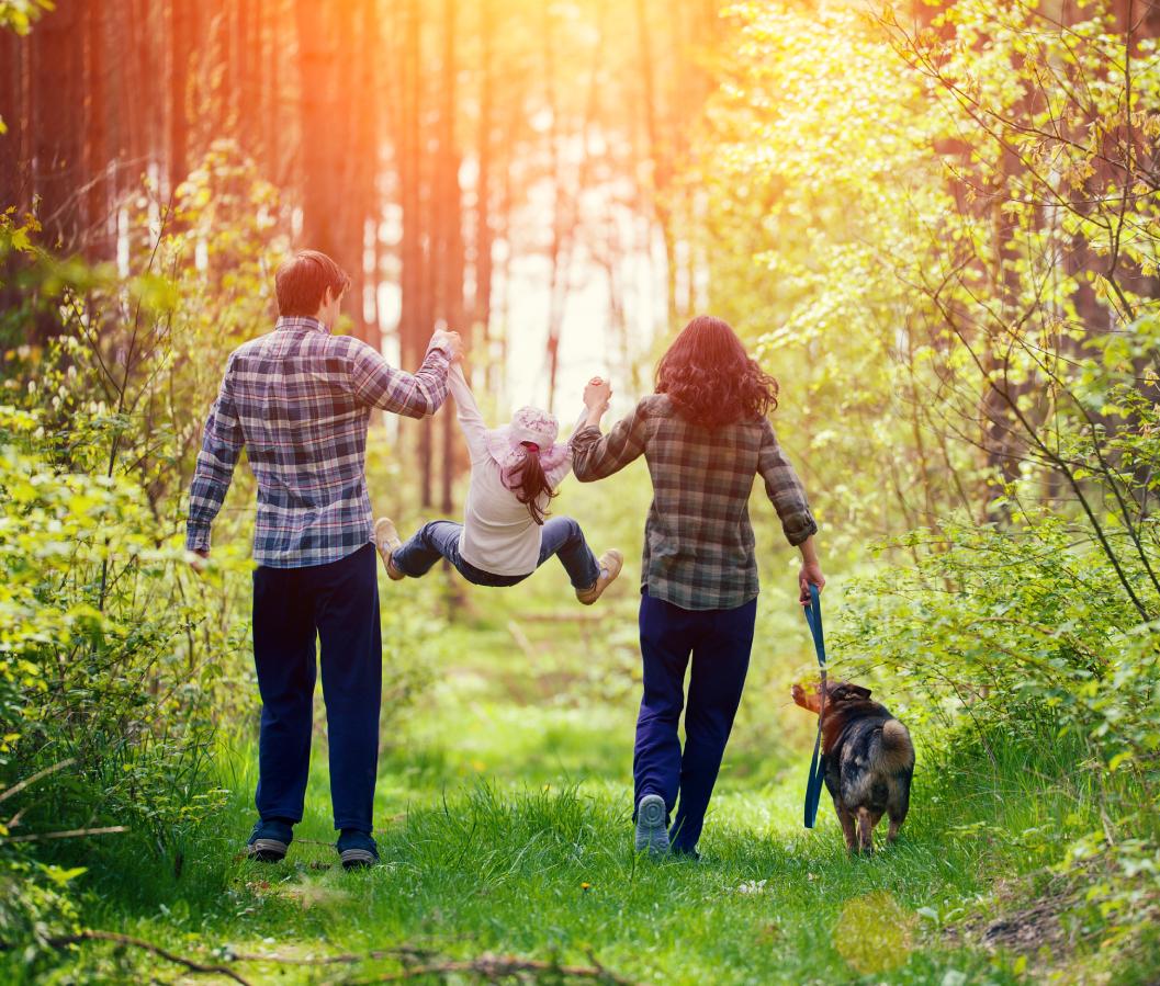 parenting coordination scheme